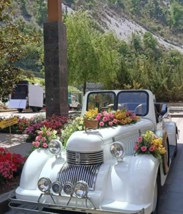 A decorated white vintage car in the laps of mussoorie hills